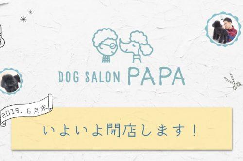 Dog Salon PAPA 6月末いよいよ回転します。